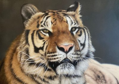 Photorealistic oil painting of a tiger