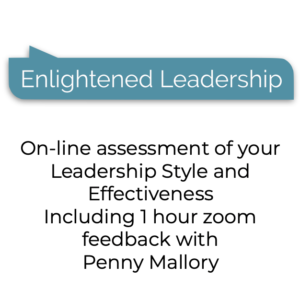 Enlightened Leadership Assessment