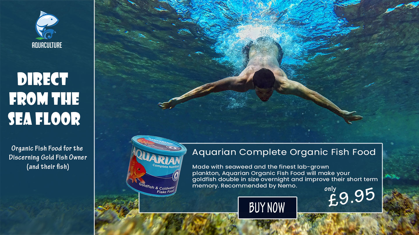 Fish Food Specific Landing Page